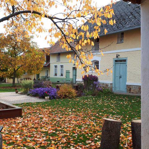 Krásný podzimní dvorek