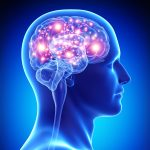 mozek a mysl